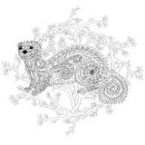 Hand drawn ferret with high details. Hand drawn ferret in zen tangle style with high details. Coloring page for anti-stress art therapy. Black white hand drawn Royalty Free Stock Image