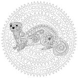 Hand drawn ferret with high details. Hand drawn ferret in zen tangle style with high details. Coloring page for anti-stress art therapy. Black white hand drawn Stock Photo