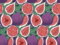 Hand drawn figs fruit seamless pattern. Doodle wallpaper vector. Fresh fruits collection. Vector illustration Stock Photo