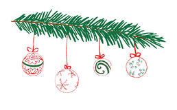 Hand drawn fir branch with balls Stock Images