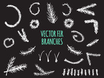 Hand Drawn Fir Branches, Christmas Tree,. Vector elements isolated on black background Stock Photos