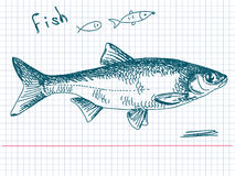 Hand drawn fish. Ink pen sketch Stock Photos