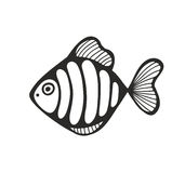 Hand drawn fish isolated on the white background. Vector illustration Stock Image