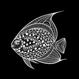 Hand drawn fish in zentangle style. Patterned vector illustration for adult anti stress coloring pages Stock Images