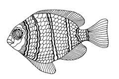 Hand Drawn Fish Stock Photo