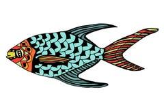 Hand Drawn Fish Royalty Free Stock Image