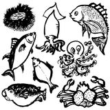 Hand drawn fishes. Stock Images
