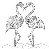 Hand drawn flamingo couple zentangle style Royalty Free Stock Photos