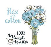 Hand drawn flax and cotton. Royalty Free Stock Image