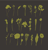 Hand drawn floral autumn vintage Stock Images