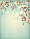 Hand drawn floral background with orchids Stock Image