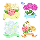 Hand drawn floral compositions with ribbons Royalty Free Stock Images