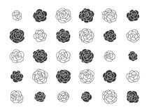 Hand drawn floral decorative design elements. Set of hand drawn floral decorative design elements, vector illustration. Flowers, roses Stock Photos