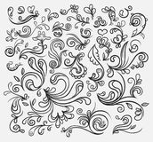 Hand drawn floral element. A hand drawn vintage floral elements Stock Photography
