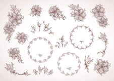 Hand drawn floral elements for design, frames and flowers. In re Stock Image