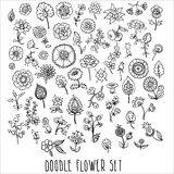 Hand drawn floral elements. Doodle, vector illustration Stock Images