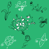 hand drawn floral Elements Set Royalty Free Stock Photography