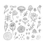 Hand drawn floral elements set Royalty Free Stock Photo
