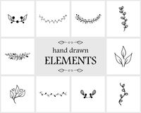 Hand drawn floral logo elements and icons Royalty Free Stock Image