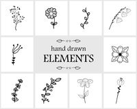 Hand drawn floral logo elements and icons Stock Photography