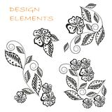 Hand drawn floral monochrome design elements. Stock vector illustration Stock Images