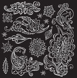 Hand drawn floral ornament Royalty Free Stock Images