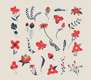 Hand drawn floral retro. Hand Drawn vintage floral elements for design royalty free illustration