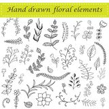 Hand drawn floral set Stock Photography
