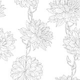 Hand drawn floral wallpaper Stock Photos