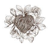 Floral vector design frame with big heart. Hand drawn sketch tropical flower Plumeria. Botanical illustration engraving vector illustration