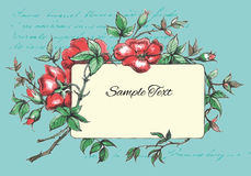 Hand Drawn Flower Card Template Stock Photo