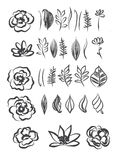 Hand drawn flower and leaves Element design Royalty Free Stock Images