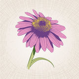 Hand Drawn Flower Royalty Free Stock Photo