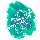 Hand drawn flower on watercolor background.  Royalty Free Stock Photography