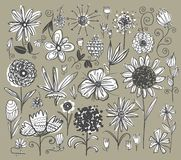 Hand drawn flowers stock illustration