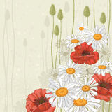 Hand drawn flowers background Royalty Free Stock Image