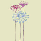 Hand drawn flowers Stock Photography