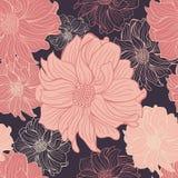 Hand-drawn flowers of dahlia Royalty Free Stock Image