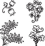 Hand drawn flowers Royalty Free Stock Images