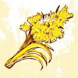 Hand drawn flowers on grunge background. Hand drawn flowers on grunge background Royalty Free Stock Photo