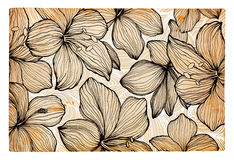 Hand drawn flowers on paper background Stock Images