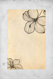 Hand drawn  flowers on paper background Stock Photo