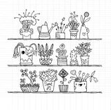 Hand drawn Flowers In Pots, doodle set Royalty Free Stock Image