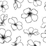 Hand-drawn flowers seamless pattern. Hand-drawn outline flowers seamless pattern Royalty Free Stock Photography
