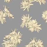 Hand Drawn Flowers Seamless Pattern Royalty Free Stock Images