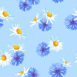 Hand Drawn Flowers Seamless Pattern Stock Image