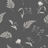 Hand Drawn Flowers Seamless Pattern Royalty Free Stock Photography