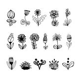 Hand drawn flowers set Royalty Free Stock Photos