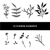 Hand drawn flowers set royalty free illustration