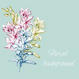 Hand drawn flowers. Spring contour flowers for decoration of festivities on paper,postcards, felicitation. Vector illustration. Hand drawn flowers. Spring stock illustration